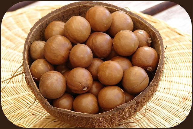 These are macadamia nuts, which are nuts. A coconut is not a nut.